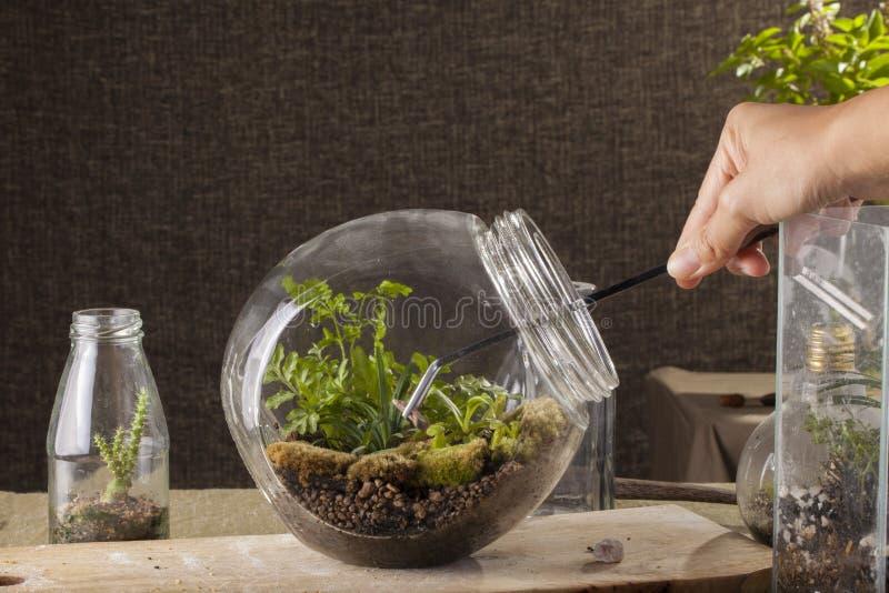 玻璃容器 库存照片