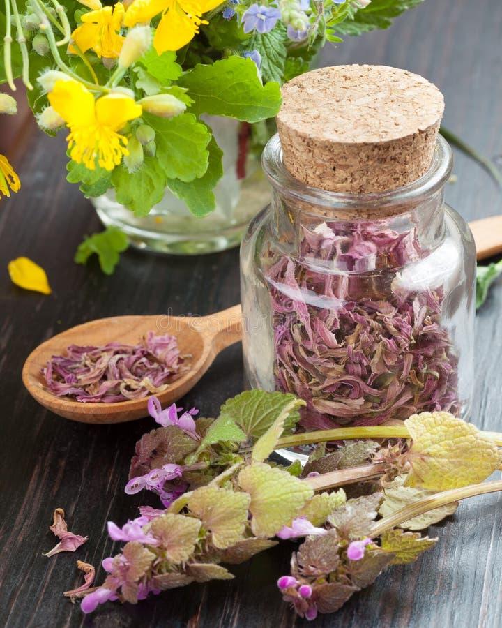 玻璃瓶用医治草本、健康花和木spo 免版税图库摄影