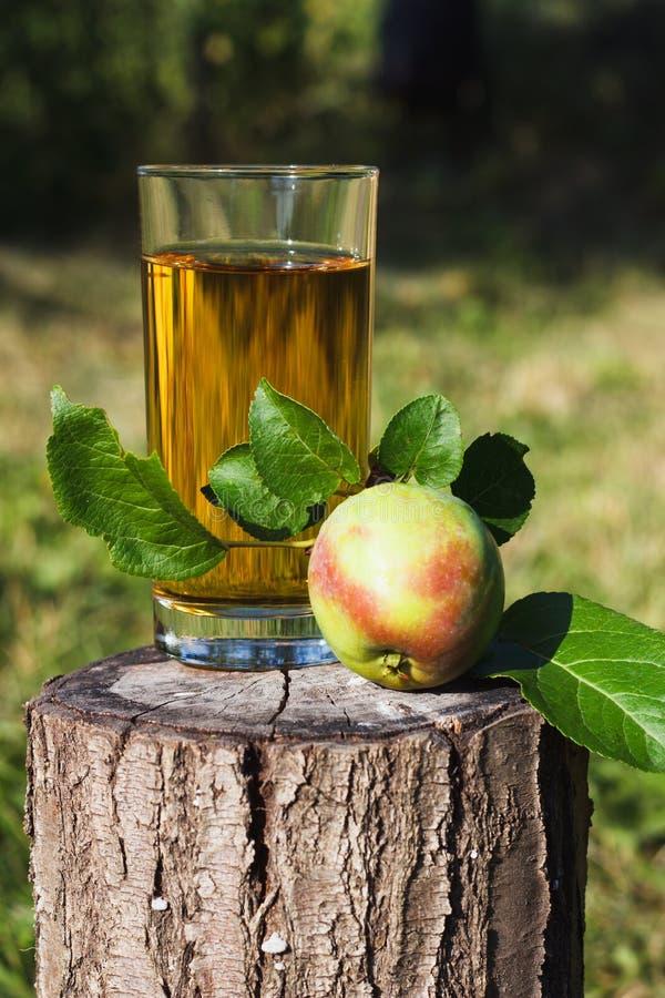 玻璃用苹果汁和果子在它附近 库存照片