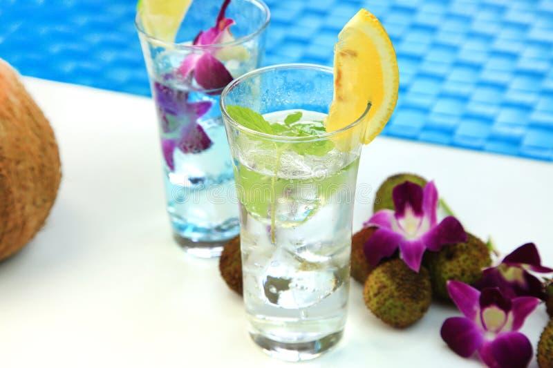 玻璃水瓶柑橘饮料冰橙色夏天水 图库摄影