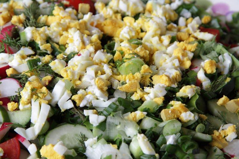 黄瓜、蕃茄、萝卜和鸡蛋沙拉  免版税库存图片