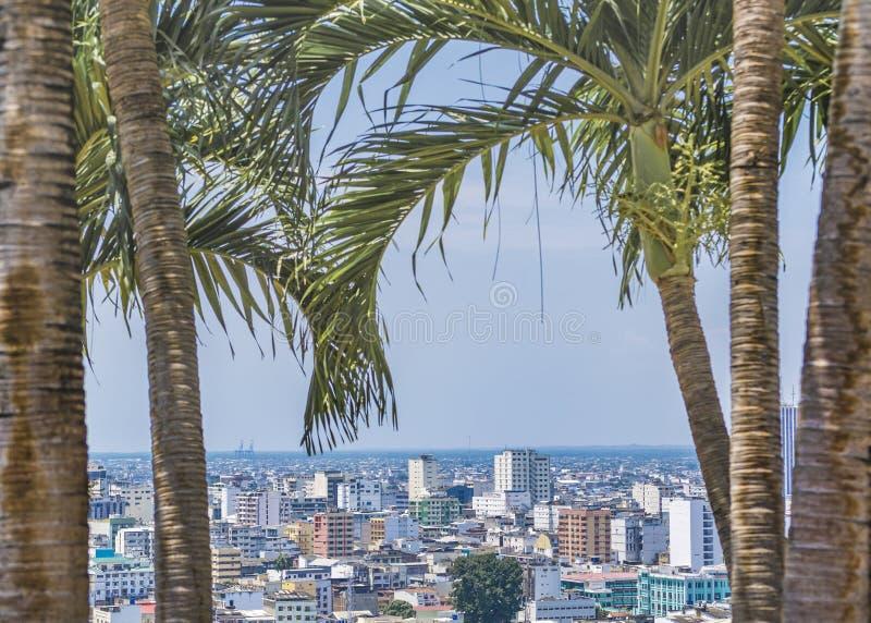 Download 瓜亚基尔都市风景鸟瞰图 库存照片. 图片 包括有 瓜亚基尔, 结构树, 圣诞老人, 拱道, 目的地, 掌上型计算机 - 72373138