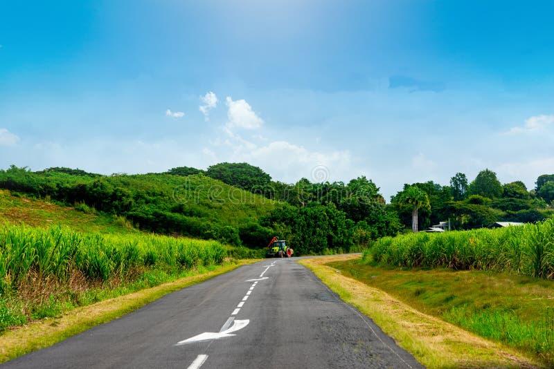 瓜德罗普乡村公路边缘拖拉机 库存照片