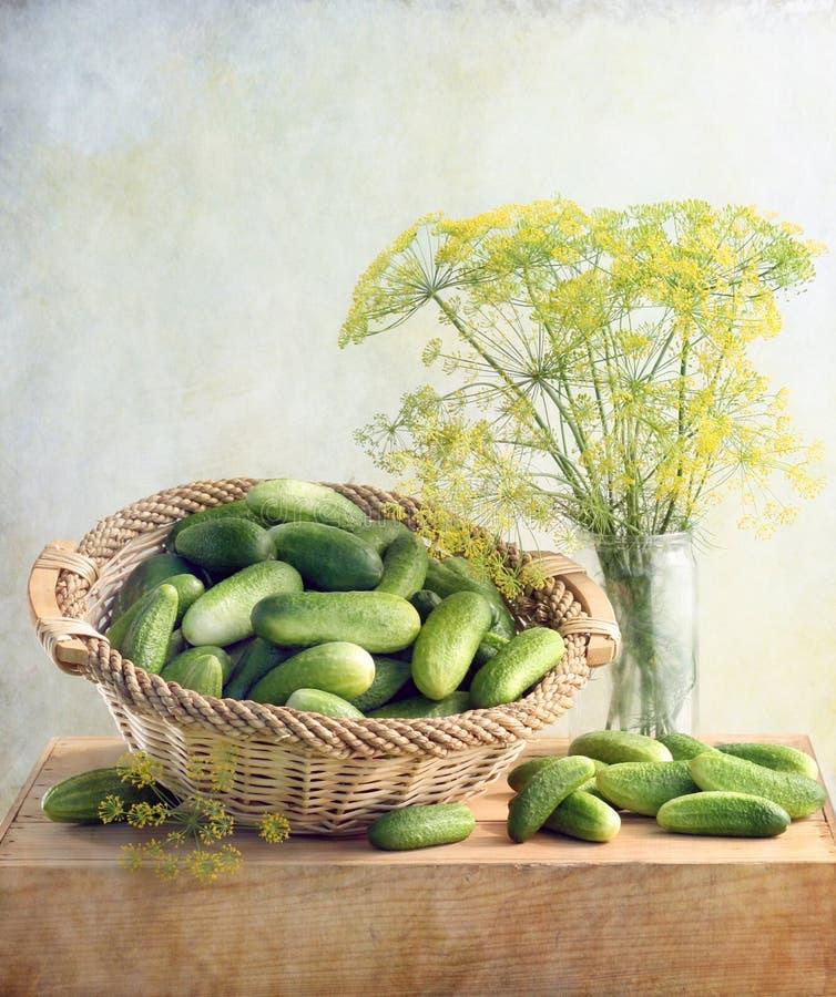 黄瓜 免版税库存图片