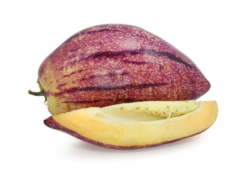 瓜pepino 免版税库存图片