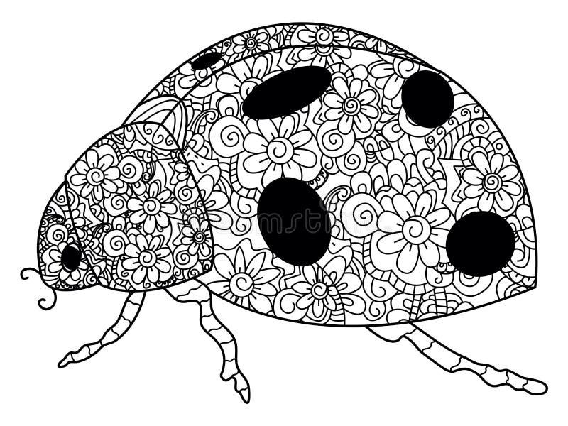 瓢虫成人的着色传染媒介 向量例证