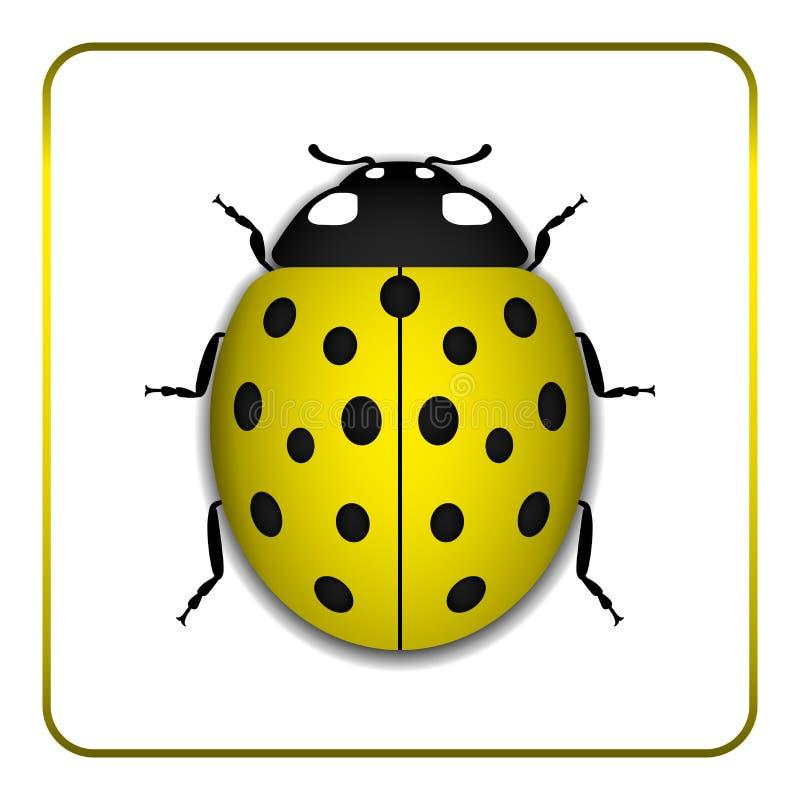 瓢虫黄色现实动画片象 向量例证