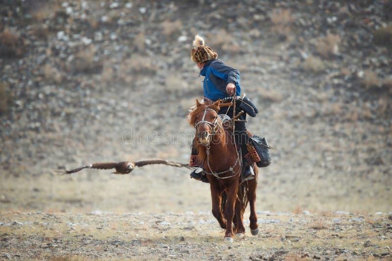 瓦剌,鹫节日 在蓝色衣裳和一顶裘皮帽在布朗马和金黄的飞行的蒙古车手猎人 免版税库存照片
