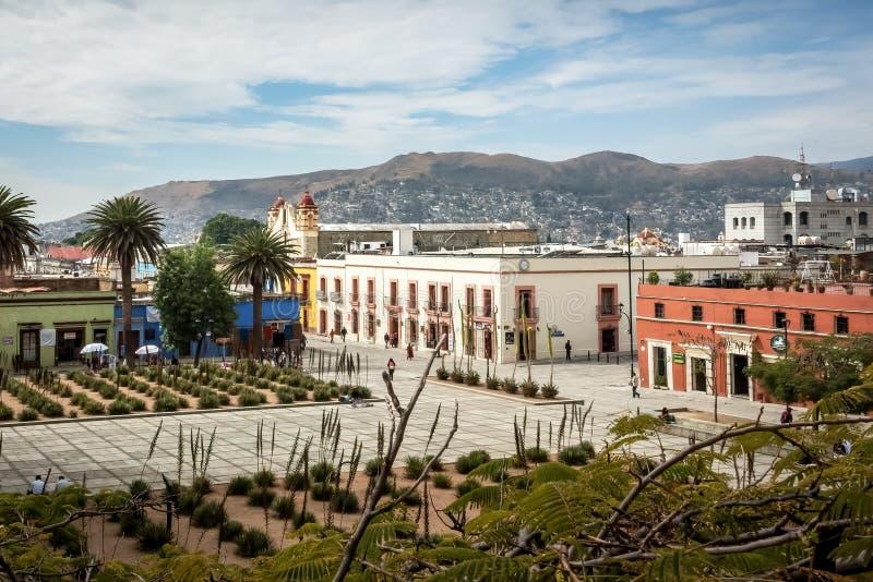 瓦哈卡de JuA ¡ rez,瓦哈卡,墨西哥正方形的仙人掌庭院  图库摄影
