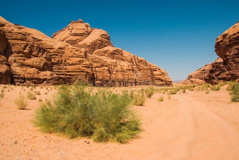 瓦地伦沙漠风景,月亮的谷,约旦中东联合国科教文组织世界遗产名录 冒险异乎寻常的概念 库存图片