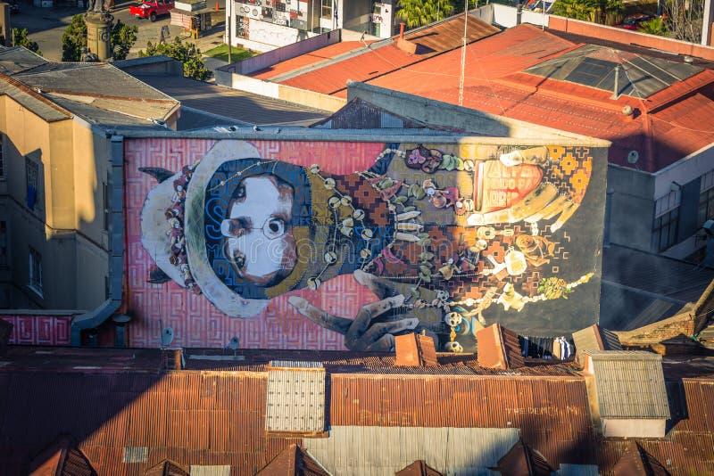 瓦尔帕莱索- 2017年7月14日:瓦尔帕莱索,智利的街道艺术  库存照片