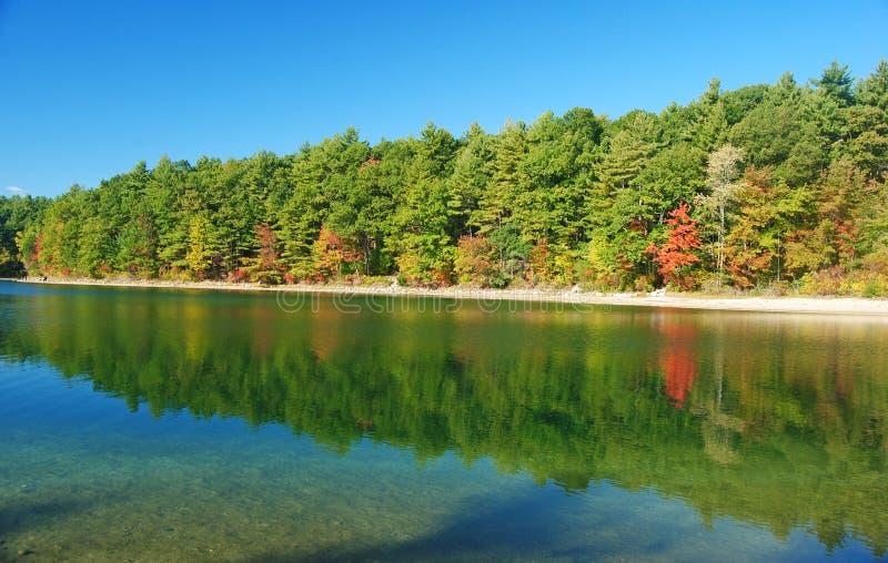 瓦尔登湖池塘 库存照片