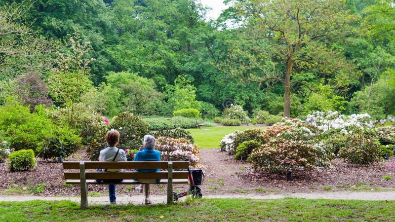 瓦赫宁恩,荷兰- 2016年4月30日:两基于长凳的妇女 免版税库存照片