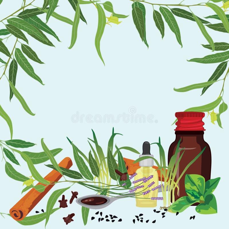 瓶医学混合物和医疗草本 向量例证