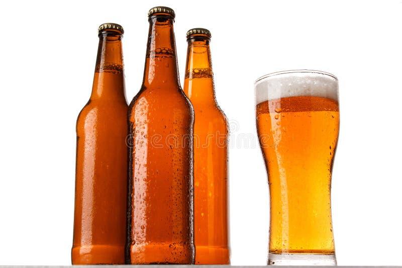 瓶和杯啤酒 免版税库存图片