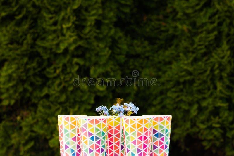 瓶在一个木盘子的新近地被紧压的桔子和莓果汁身分在起斑纹的一张五颜六色的土耳其玉色野餐桌上 库存照片