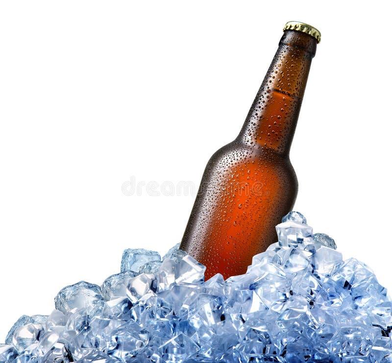 瓶在冰的啤酒 库存照片