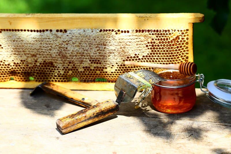 瓶子在一个玻璃瓶子的新鲜的蜂蜜,外面养蜂业工具 与蜂充分蜡结构的框架在蜂窝的新鲜的蜂蜂蜜 免版税库存图片