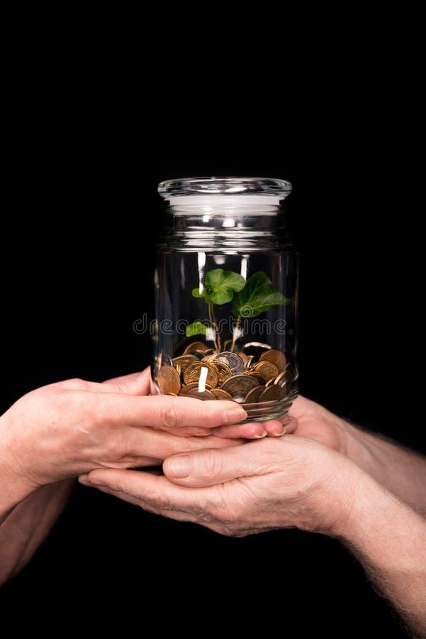 瓶子的加上硬币和植物 免版税库存照片