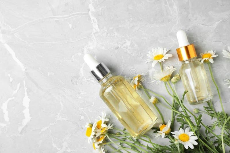 瓶春黄菊精油和花在灰色桌,平的位置上 免版税图库摄影