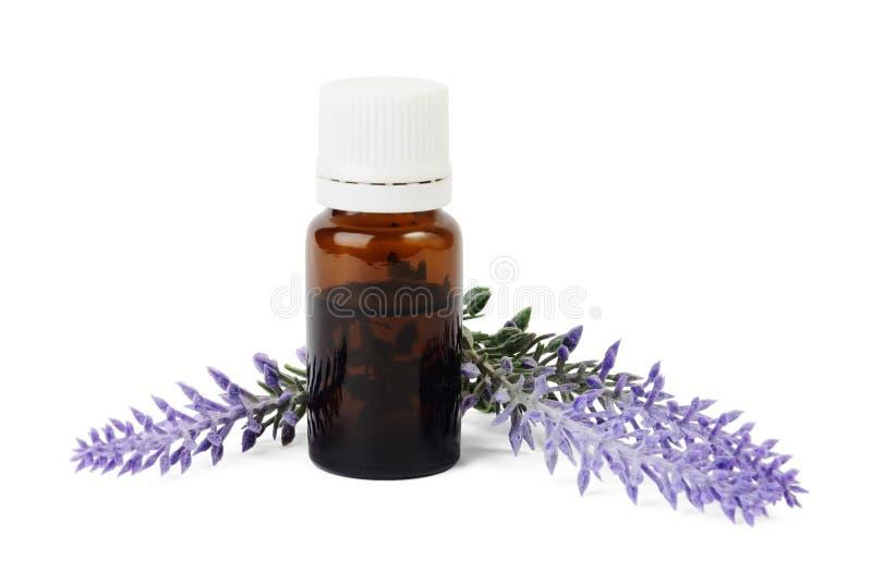 瓶有机精油和淡紫色在白色背景开花 免版税图库摄影