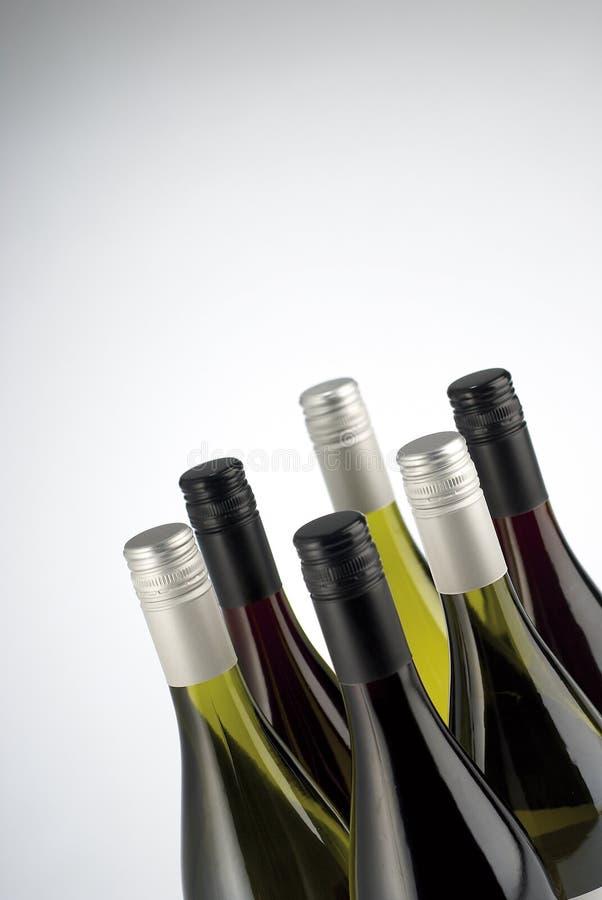 瓶查出白葡萄酒 库存图片