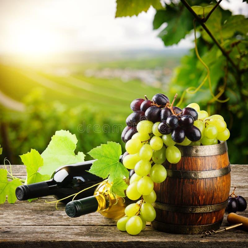 瓶红色和白葡萄酒用新鲜的葡萄 免版税库存图片
