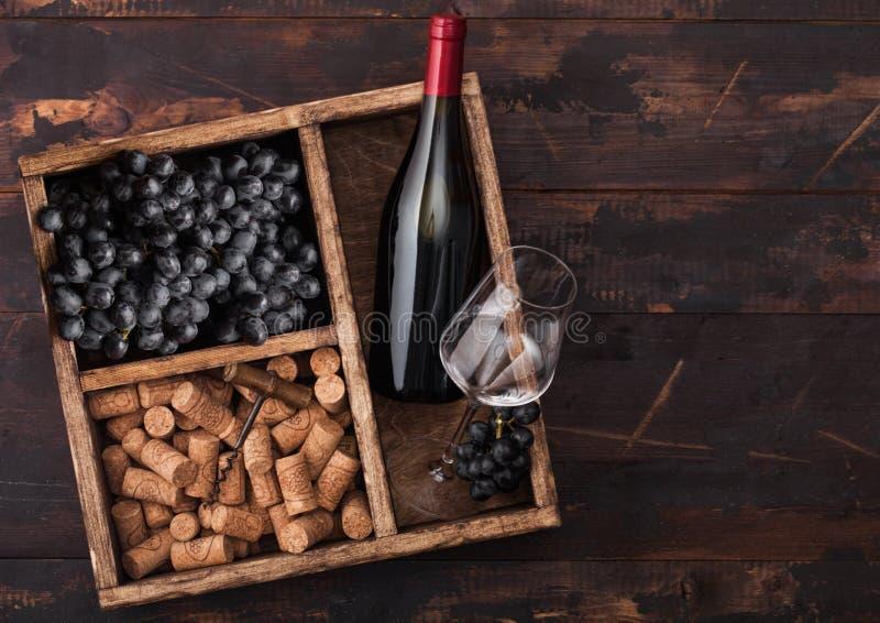 瓶红酒和空的玻璃用黑暗的葡萄与黄柏和拔塞螺旋在葡萄酒木箱里面在黑暗的木背景 免版税库存照片