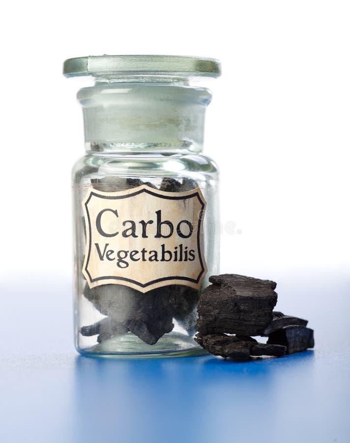 瓶羰碳纯vegetabilis 免版税库存图片