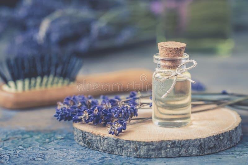 瓶自然化妆熏衣草油,头发和身体治疗,在背景的木按摩刷子 库存图片