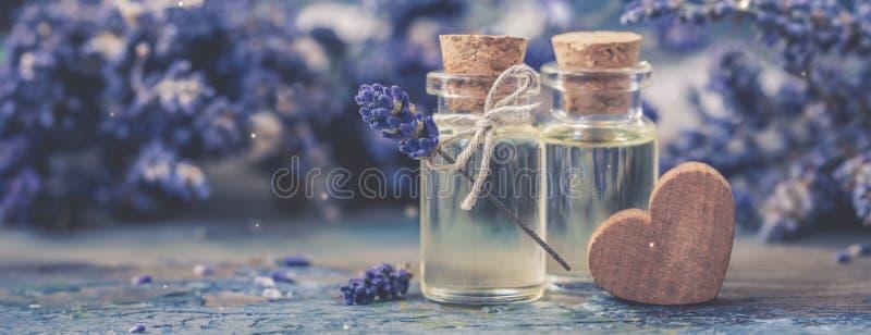 瓶自然化妆熏衣草油,头发和身体治疗,横幅 免版税库存图片