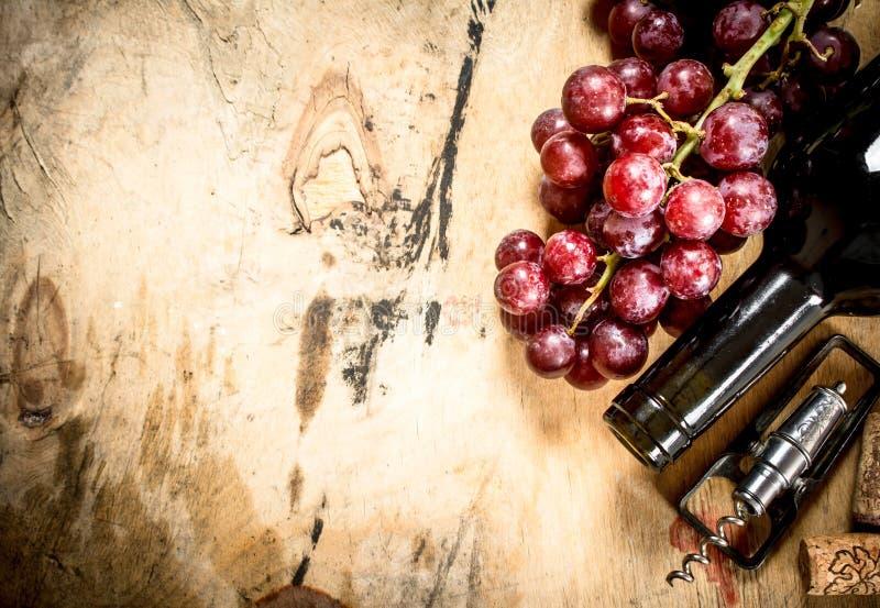 瓶葡萄红葡萄酒 库存图片