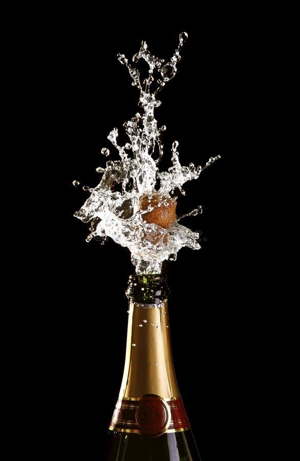 瓶shotting香槟的黄柏 库存照片