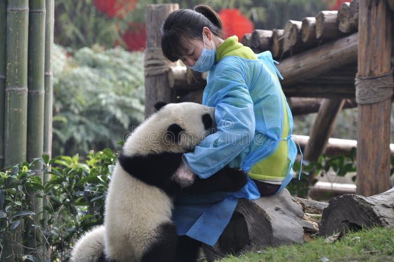 瓷女孩护士熊猫年轻人 免版税图库摄影