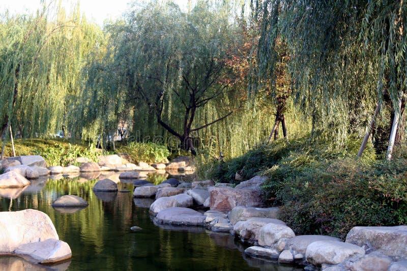 瓷庭院使池塘环境美化 库存照片