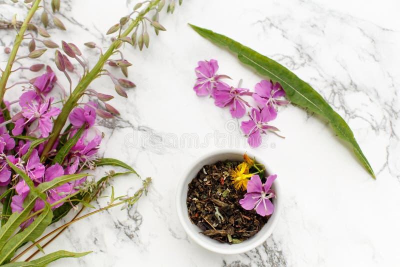 瓷杯用与野草和草甸的干草本伊冯茶 图库摄影