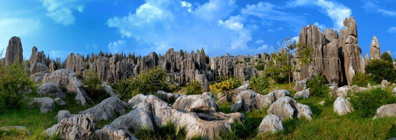 瓷森林石头 免版税库存照片