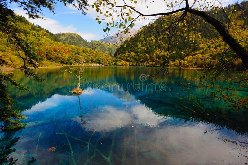 瓷森林jiuzhaigou湖横向 免版税图库摄影