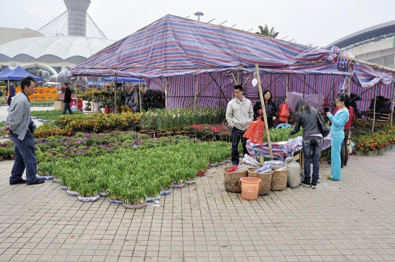 瓷节日花市场春天珠海 免版税库存图片