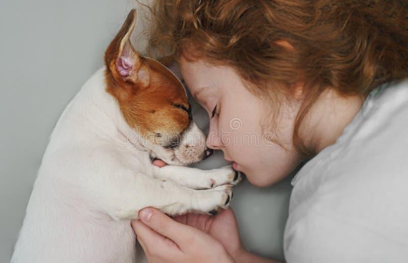 甜卷曲女孩和小狗顶起罗素狗在夜睡觉 免版税图库摄影