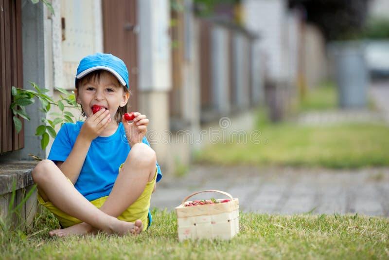 甜可爱的小孩,吃草莓,夏令时的男孩 免版税库存图片