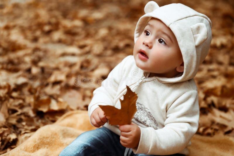 甜婴孩在秋天森林里 库存图片