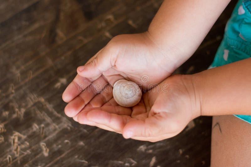 甜小女孩拿着一只美丽的蜗牛 免版税库存图片