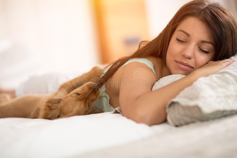 甜小狗热切地等候女孩从床醒 库存照片
