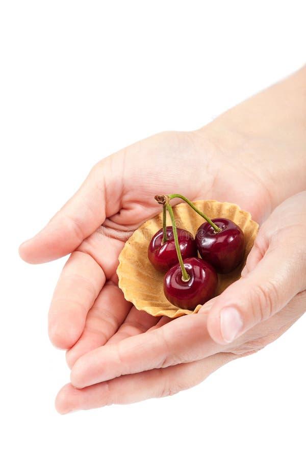 Download 甜樱桃果子在女性手上 库存图片. 图片 包括有 叶子, bataan, 女性, 水多, 新鲜, 自创, 美食 - 72355023