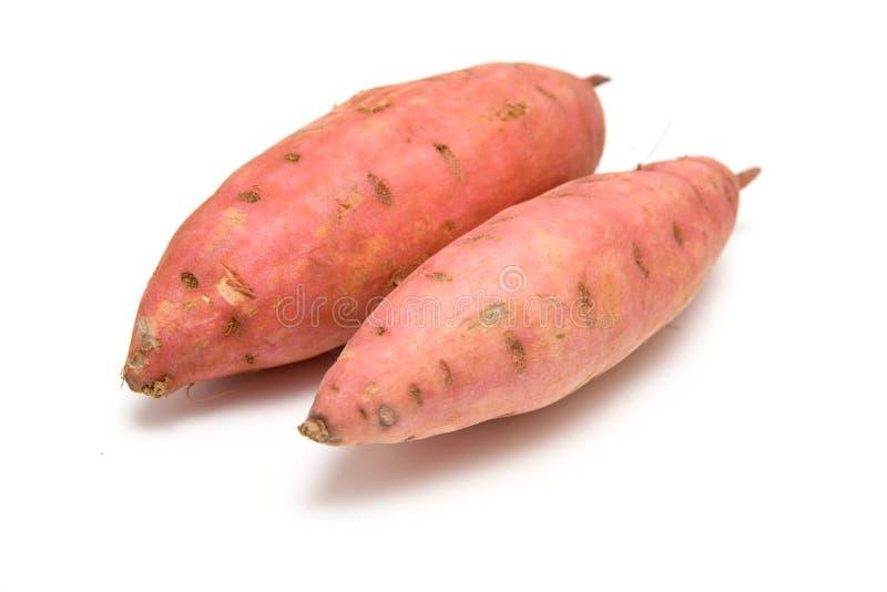 甜的土豆 库存图片