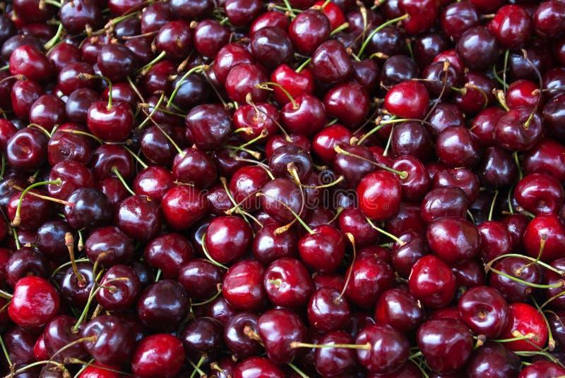 甜红色樱桃 库存图片