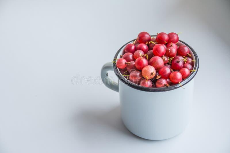 甜莓果点心,鹅莓,夏天莓果 健康和自然食物,饮食营养 美丽的新鲜的红色莓果 免版税库存图片
