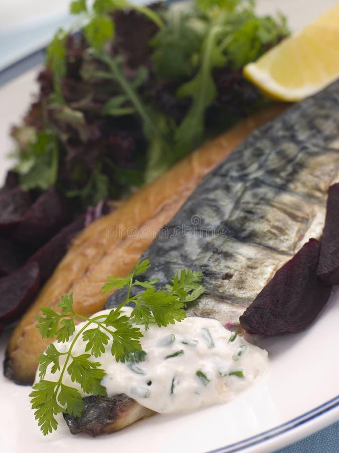 甜菜根抽烟的鲭鱼沙拉 免版税库存图片