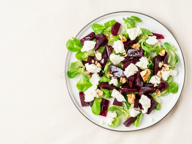 甜菜根沙拉用希脂乳、乳酪、核桃、菜用结页草和被浸盐水的乳酪,腌制在白色桌上,顶视图,拷贝空间 库存图片